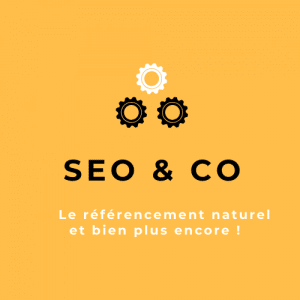 Logo SEO & CO Orange